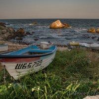 Чёрное Море и солнце :: Анастасия Елкина