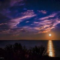 Лунная дорожка :: Артем