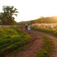 Прогулки на закате :: Ксения