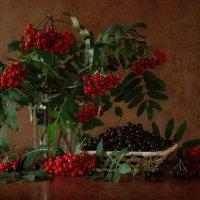 Красная и черная :: Natalia Furina