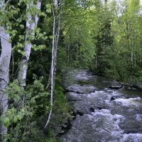 Малые реки Саян. :: Сергей Щербаков