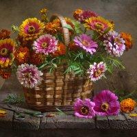 Цветы осени :: Evgeniy Belkov