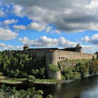 Ивангородская крепость. Река Нарова :: Marina Pavlova