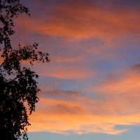 Осенний закат . :: Мила Бовкун