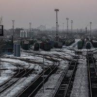 по тундре, по железной дороге... :: koz