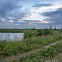утро на пруду :: gribushko грибушко Николай