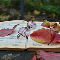 Забытая книга :: Клара