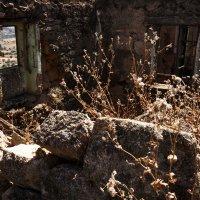 Развалины в Бельмонте :: Юрий Вайсенблюм