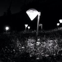 свет и ночь :: Евгений K