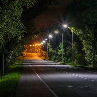 Дорога к дому. :: ALEXANDR L