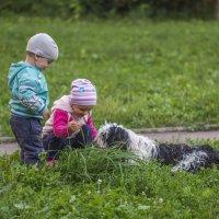 детки кормят Бию травкой :: Лариса Батурова