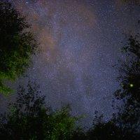 Ночное небо :: Павел Максимов