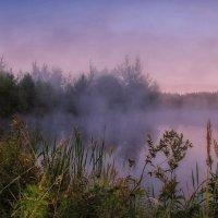 Туманное утро ... :: Va-Dim ...