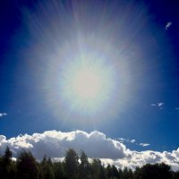 солнце :: Валерия Святогорова