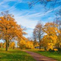 Осень в пригороде :: Виталий