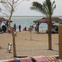 пляж мертвого моря Израиль :: Вера Ярославцева
