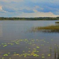 У озера :: Николай Танаев