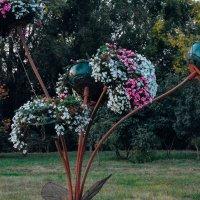цветы  на ножках :: Света Кондрашова