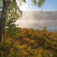 Туман над заливом :: Анатолий Иргл