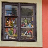 Злата улица, витрина, Пражский град :: Владимир Брагилевский
