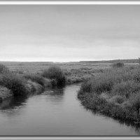 Река :: Михаил Цегалко
