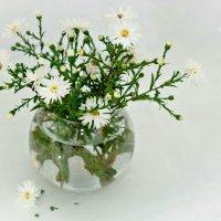 белый букетик :: Tatyana Belova