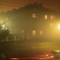 туман :: Ольга Чазова
