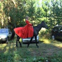 Иномарка хорошо, а лошадка лучше! :: Борис Гуревич