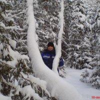 Я в зимнем лесу на прогулке :: Ирина Полозюк