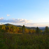 Эти горы дают лучший Алтайский сыр. :: Валерий Медведев
