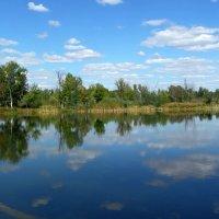 Сентябрь... Озеро Ленёво. :: Сергей Петров