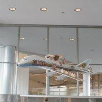 Чудо - юдо  самолет :: Виталий  Селиванов