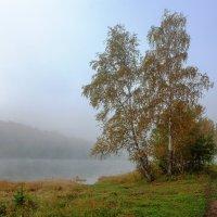 Туманная пора :: Анатолий Иргл