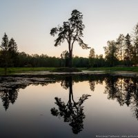 Пленник старого озера :: Александр Горбунов