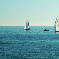 Сочи, море, яхты :: татьяна