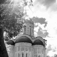 Дмитриевский собор :: Татьяна Петранова