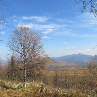 В горах :: Олег  Царёв