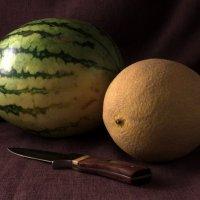Плоды с бахчи... :: Владимир Секерко