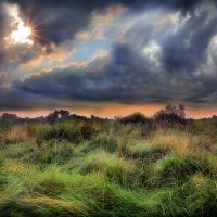 Утренний шторм.... :: Андрей Войцехов