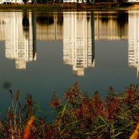 дома в озере :: Александр Прокудин