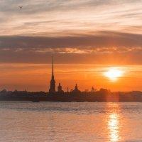 Питерские закаты :: Алексей Ершов