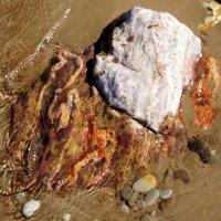 Просто красивый камень в воде... :: Елена Павлова (Смолова)