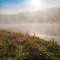 Солнце сквозь туман :: Анатолий Иргл
