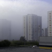 Утро туманное... :: Евгений Ярдов