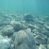 В Черном море :: Диана С