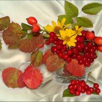 Осенний натюрморт :: °•●Елена●•° Аникина♀