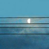Лунная нота :: Полина Потапова