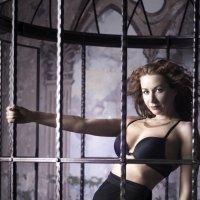 Страсть и свобода. Даже в клетке... :: Анна Янн
