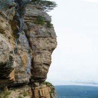 Вертикальная панорама, проба. :: Александр Светлый