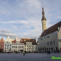 Таллин, ратушная площадь :: Александр Педаев